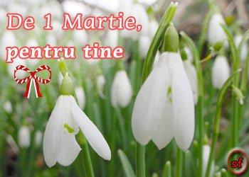 1 MARTIE 1martie